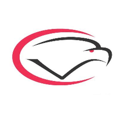 CV Eagle Logo